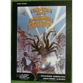 L'Invasion Des Araignées Géantes - Synopsis
