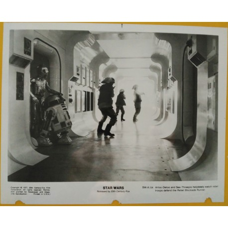 STAR WARS - Photo Presse - 1977 - George Lucas, Mark Hamill, Harrison Ford, Carrie Fisher, Peter Mayew