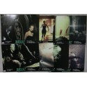 RELIC - Jeu de 8 photos d'exploitations - 1997 - Peter Hyams, Tom Sizemore, Penelope Ann Miller, Linda Hunt